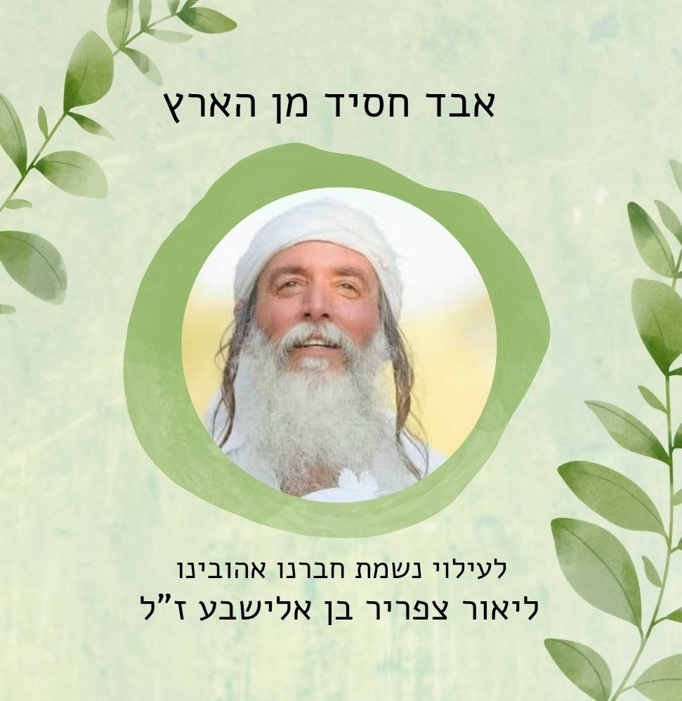 """Read more about the article Baruch Dayan HaEmes – Lior Tzafrir HaKohen z""""l"""